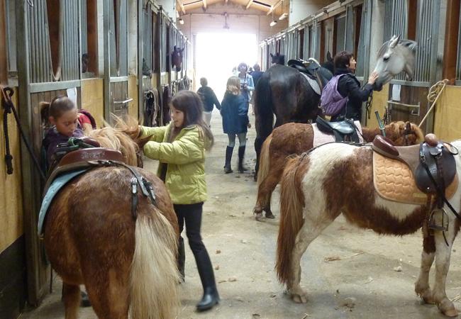 centre equestre saint xandre