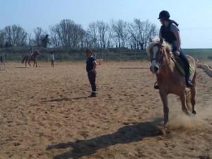 Reprise chevaux